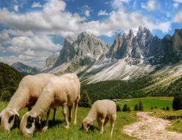 Ladiner Fest Südtirol